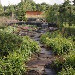 https://virtoni.cz/wp-content/uploads/2017/09/zahrada-s-jezerem1-150x150.jpg