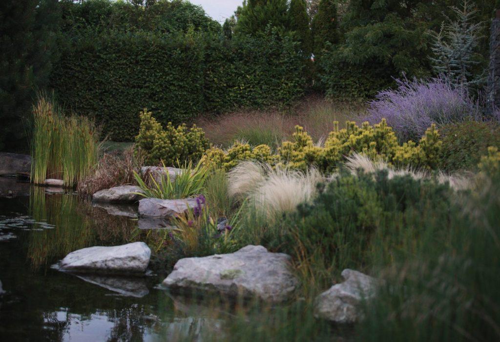 zahrada s jezerem6
