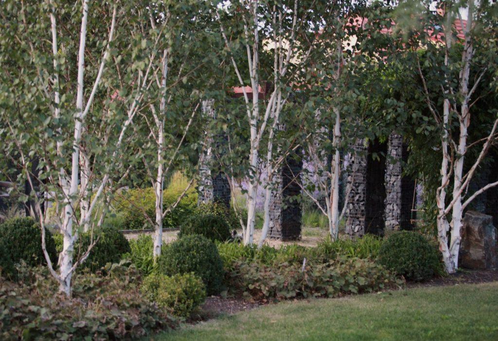 zahrada s jezerem7