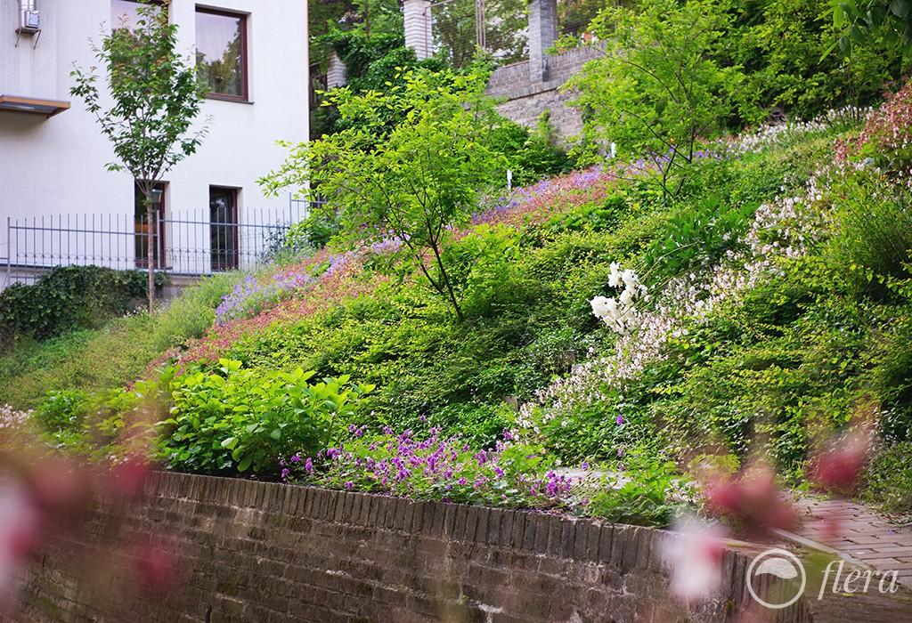 zahrada ve svahu4