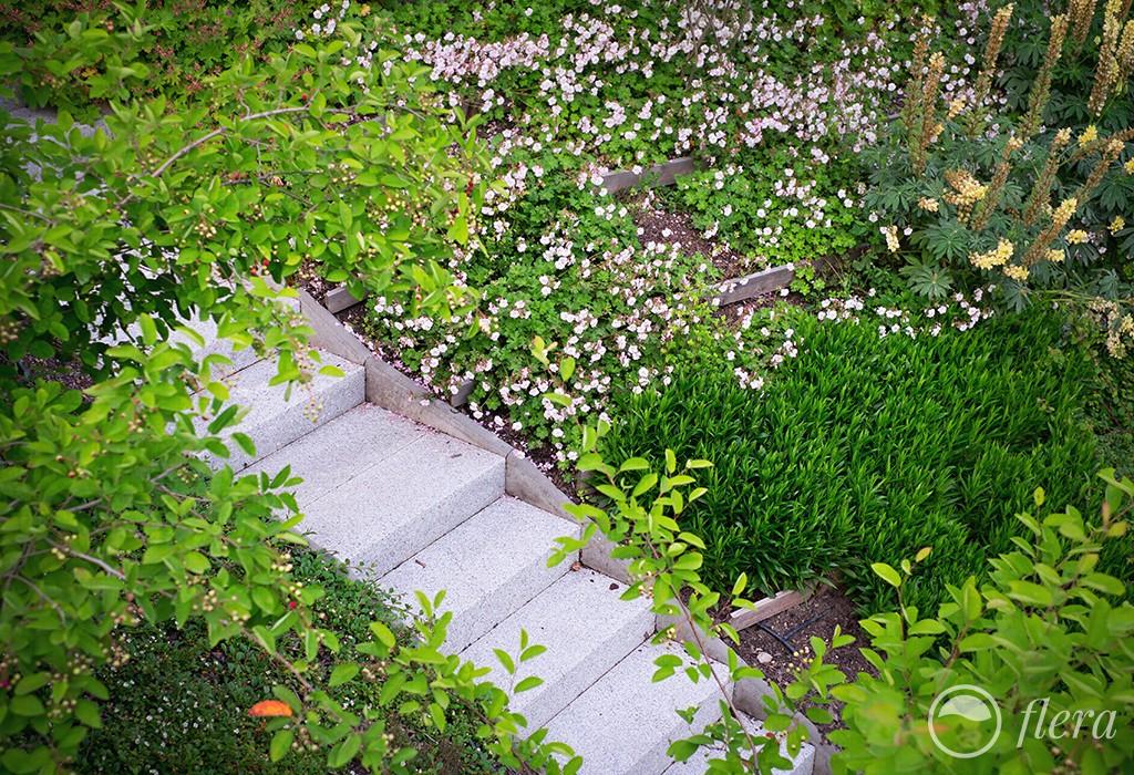 zahrada ve svahu5