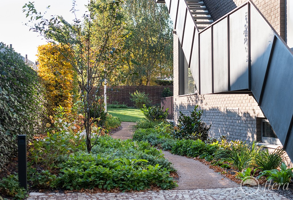 zahrada pro sochu6